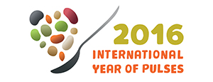 International Year of Pulses logo