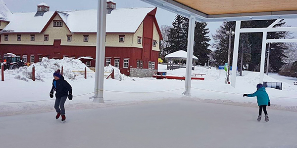 Museum Ice Rink - Press tab then enter to visit page